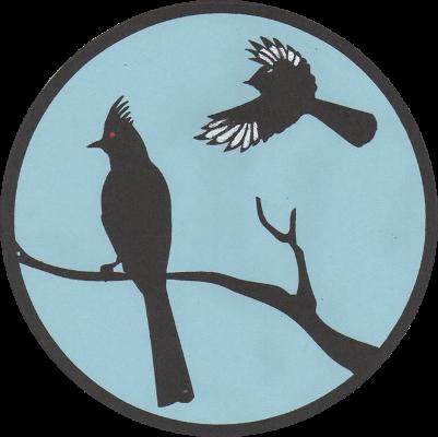SFVAS Logo
