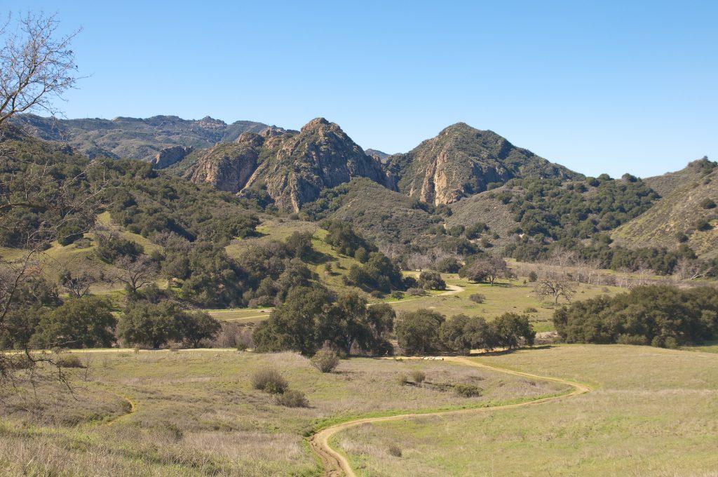 CANCELLED Malibu Creek State Park Bird Walk CANCELLED